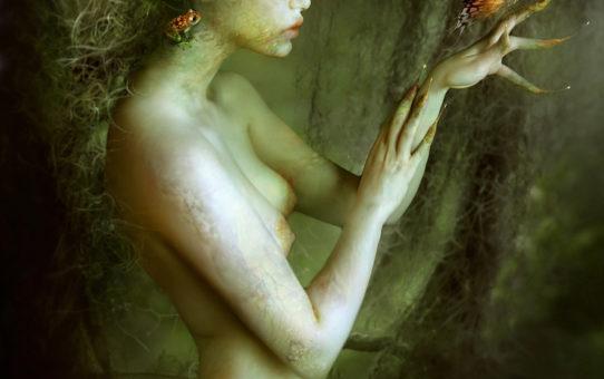 Линда Бергквист (Linda Bergkvist, Enayla), Skin Flayer