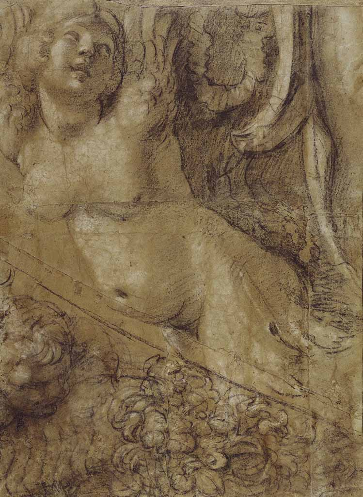 "Аннибале Карраччи (Annibale Carracci) ""Cartoon of a Siren for the Camerino Farnese"""