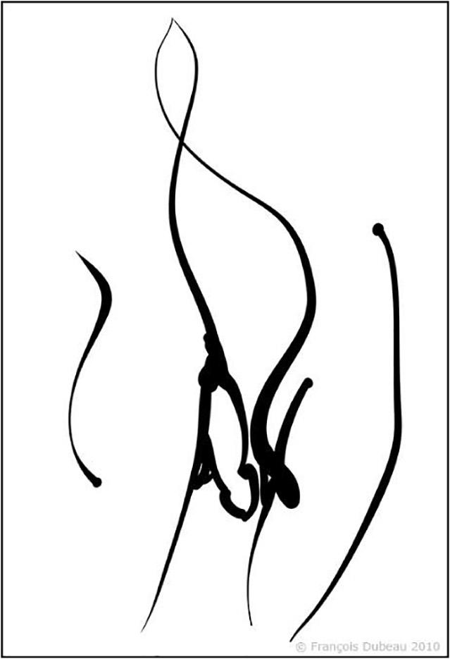 """Франсуа Дабо (Francois Dubeau), """"Sans titre – 20"""""""