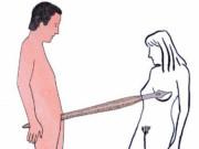 Марион Файоль (Marion Fayolle), Erotic Illustration – 22