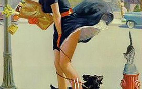 """Арт Фрам (Art Frahm), """"Дамы в беде"""", Падающие трусики - 12"""