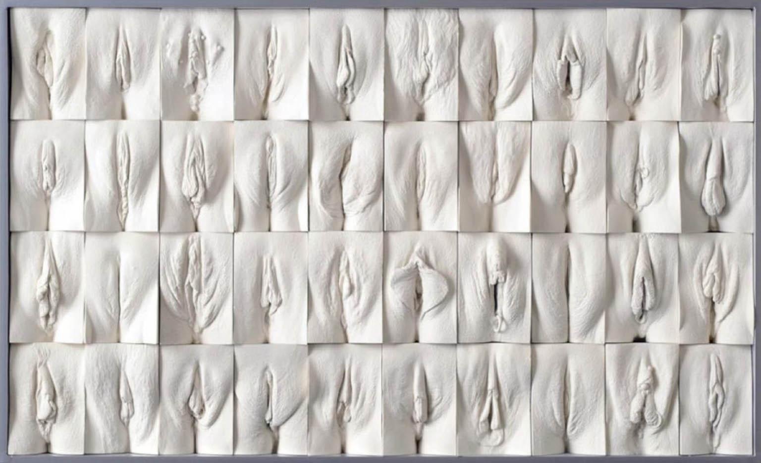 "Джейми Маккартни (Jamie McCartney) ""The Great Wall of Vagina - 1"""