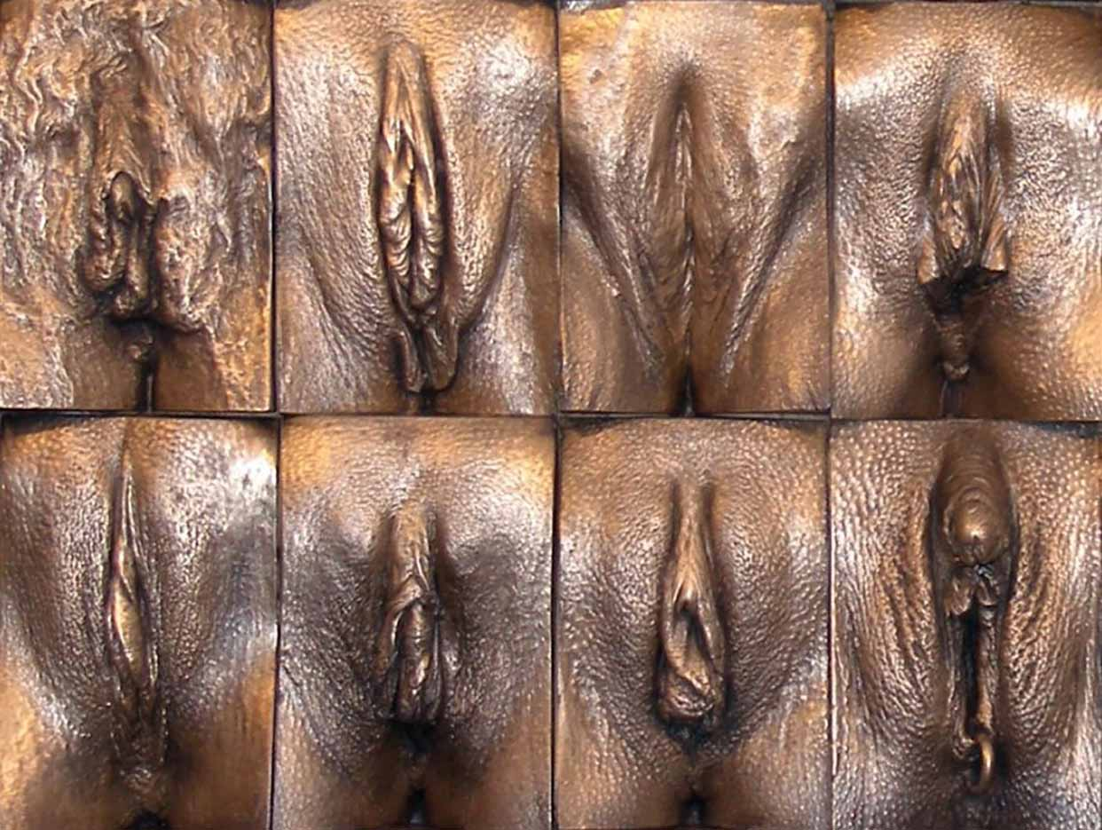 Pictures Of Different Types Of Pussy HD