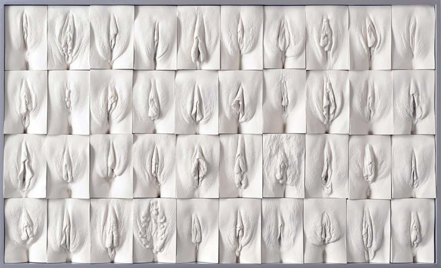 "Джейми Маккартни (Jamie McCartney) ""The Great Wall of Vagina - 4"""