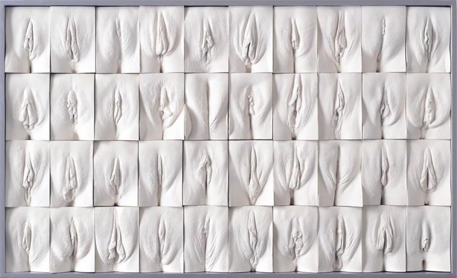 "Джейми Маккартни (Jamie McCartney) ""The Great Wall of Vagina - 5"""