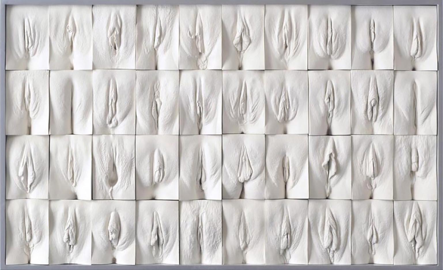 Pictures of designer vagina