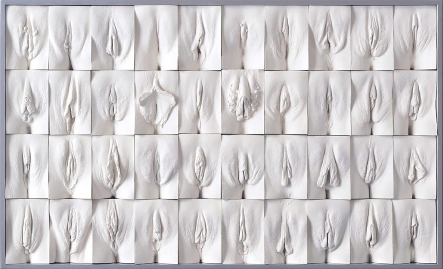 "Джейми Маккартни (Jamie McCartney) ""The Great Wall of Vagina - 8"""