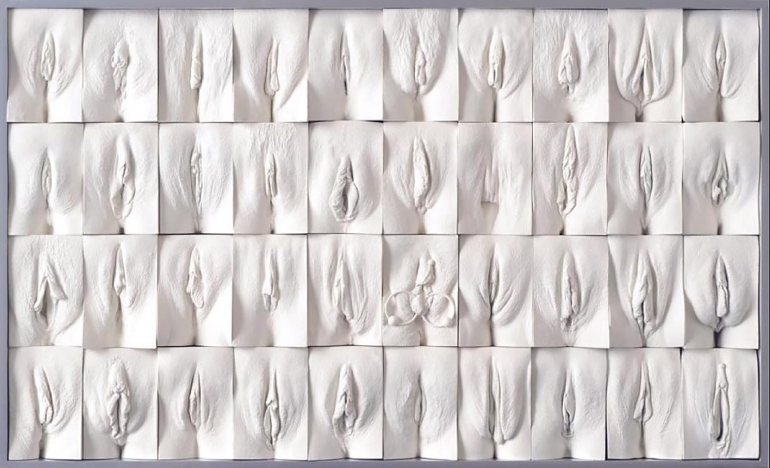 "Джейми Маккартни (Jamie McCartney) ""The Great Wall of Vagina - 9"""
