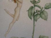 """Майкл Паркес (Michael Parkes) """"The Rose"""""""