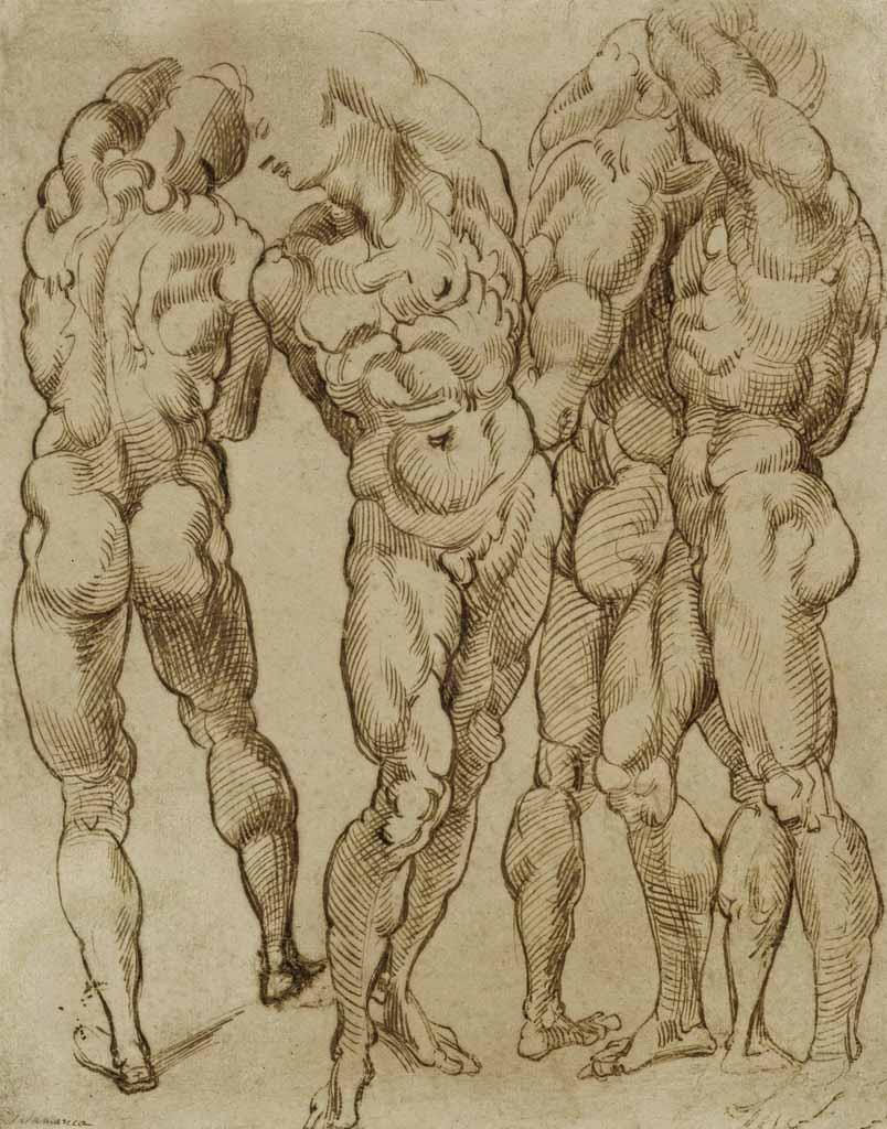 """Бартоломео Пассаротти (Bartolomeo Passerotti) """"Nude Studies"""""""
