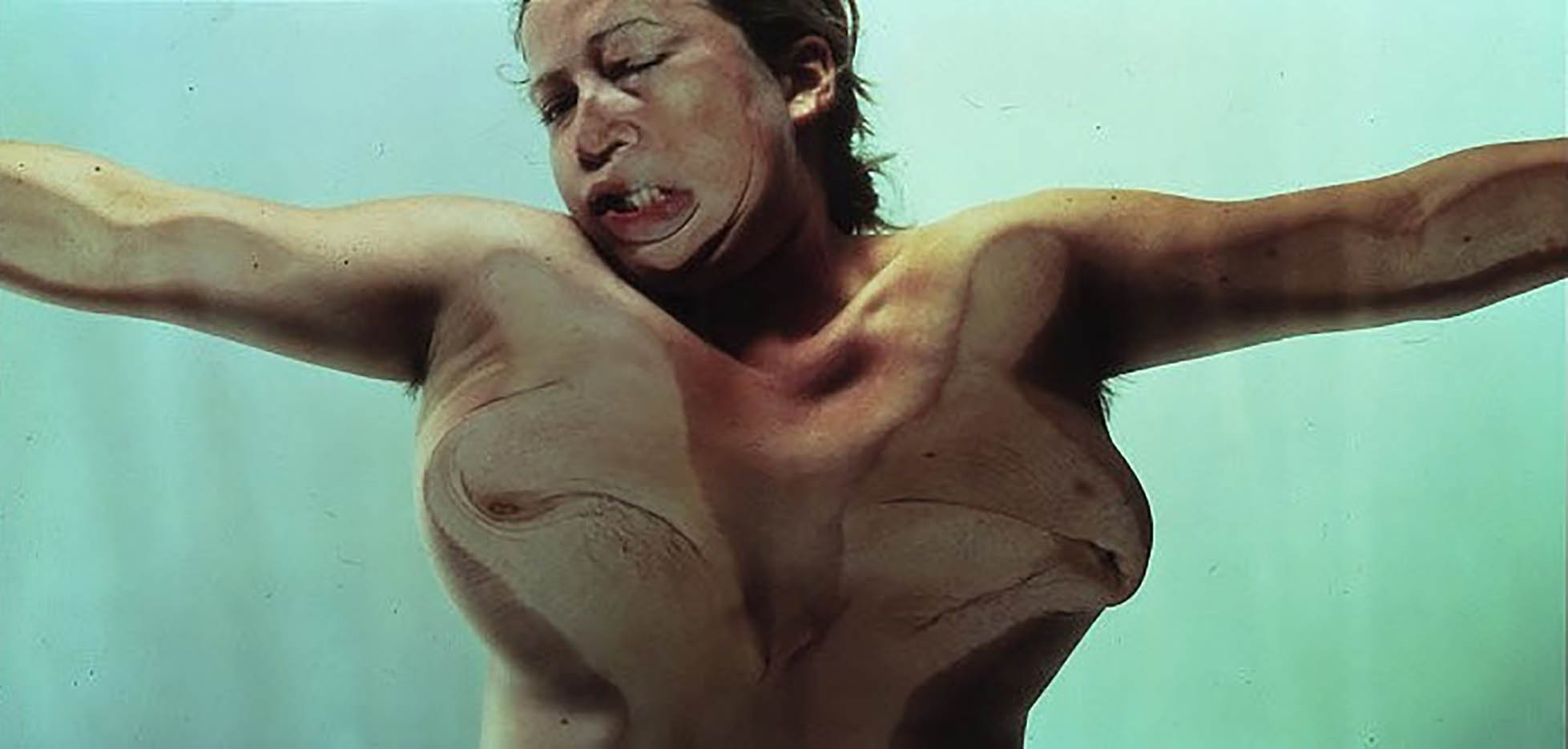 "Дженни Савиль (Jenny Saville) ""Closed Contact #13"""