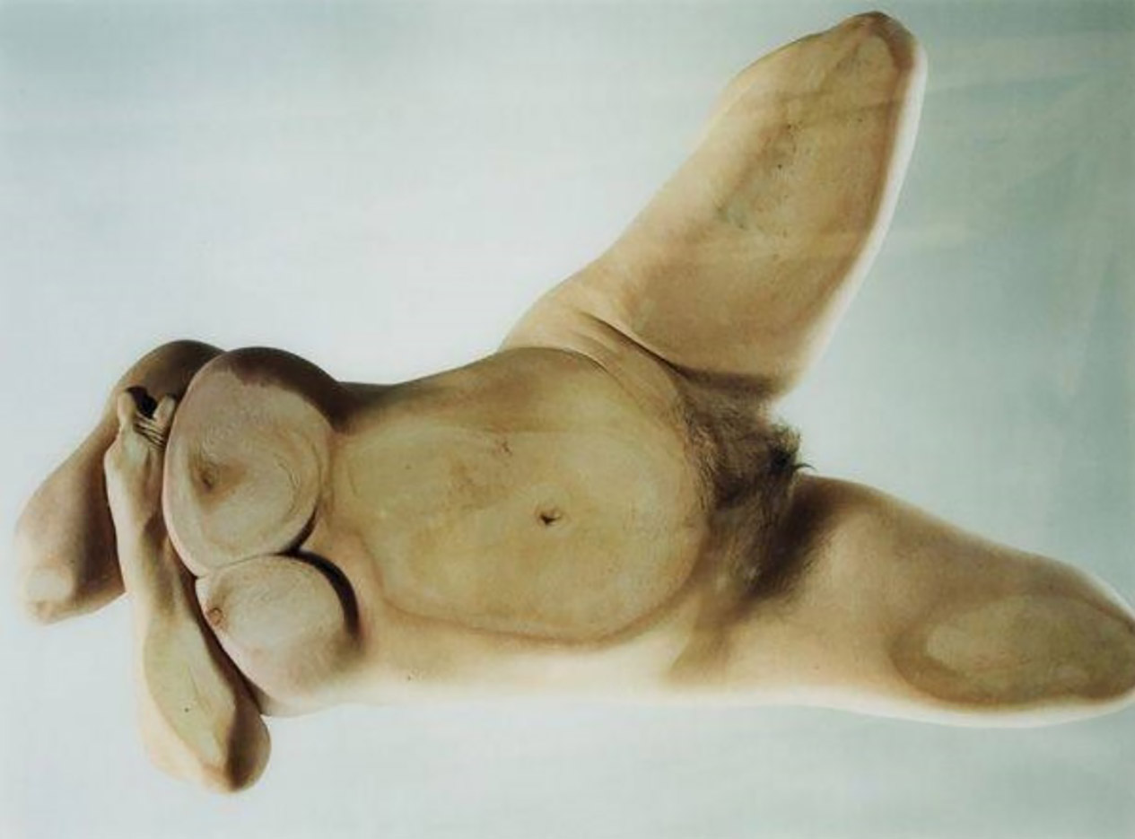 "Дженни Савиль (Jenny Saville) ""Closed contact #10 - 2"""