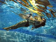 Эрик Зенер (Eric Zener), Liquid Light (Water)